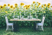 Apple Annie's Styled Shoot