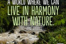 world of nature protection