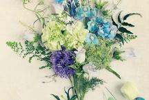 Flowers / by Michal Herbstman