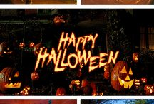 SPECIAL OCCASIONS / Special Occasions : Halloween - Christmas - Easter ...