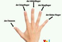 Fingernamen