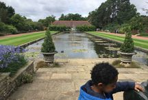 Wisley Gardens / Morning out