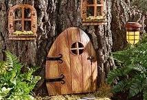 Where the fairies live