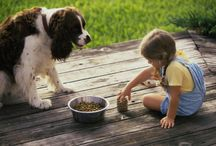 Pets and Kids with Disabilities / Pets and Kids with Disabilities