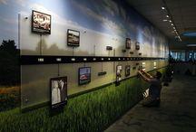 Design Walls - Museum