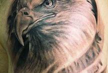 eagle trato