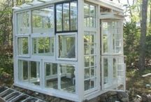 Recycled window vege house