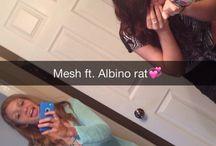 Meshh