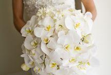~ Bouquets ~