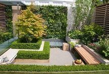 Prostota i minimalizm w ogrodzie