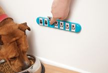 Tips and Tricks for Dog Lovers