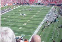 Miami Dolphins / by NFL Boards