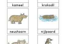 Animals Topic