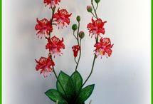 krasna kvetina