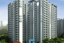 New Residential Projects in Noida Sector 77 / New Residential Projects in Noida Sector 77- Griha Pravesh Buildteck a leading real estate company is launching its projects to maintain the growth development graph of Noida real estate. Numerous residential and commercial real estate projects are there, out of which, some them are on-going, some of them are already launched and few of them are ready to be launched soon.