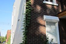 Renovation duplex / my renovation for my duplex in Montreal,Canada