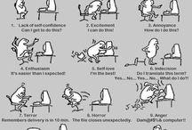 The world of Language & Translation