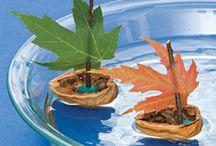 őszi barkácsolás