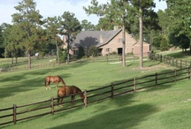 Youngs Rd Farm - Southern Pines, NC - November 15th / by Grand Estates Auction Company