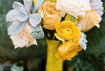 knot it. / wedding ideas / by Mary Glennon