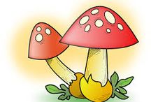 Obrázky - houby