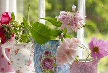 Flores / Las que nos llenan de alegría y de color