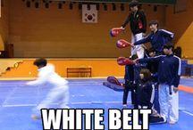 Taekwondo / martial arts, sport, Dacic Taekwondo Club