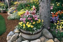 Gardening, Flowers / flowers and ideas for flower gardens