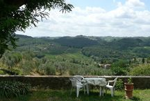 Azienda I casalini / Old farm situated on the charming tuscan hills near Florence ,between Florence and Siena in the Chianti Classico area.  The farmhouse is completely immersed in a relaxing green country and surrounded with vineyards and olive groves. The hills around show wonderful and very striking views in the middle of an uncontaminated and verdant nature, with a succession of cultivated fields and woods, typical of the tuscan country landscape.