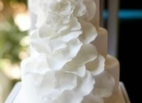 Wedding Cakes/Groom Cakes
