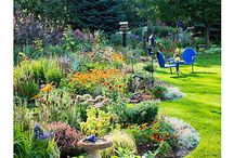 My Northwest Flower Garden