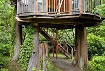 Dom na drzewie/  Tree house