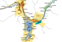 WINE DREAMS / wines I'd like to try more of, learn more about, visit the areas,