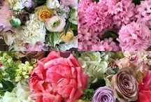 176 MacDougal St Shop / Come by and pick your favorite flowers at the shop! We are open from 11-6.