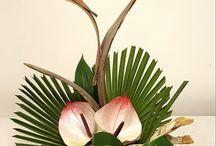 Bouquets originaux fleurs tropicales / Original bouquet of tropical flowers