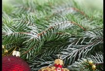 Christmas Party Ideas!!!