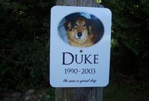 Pet Memorials
