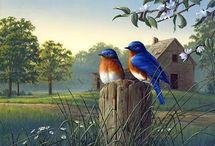 Bird Painting s