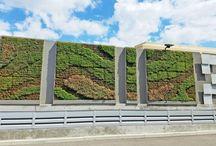 Zöld fal