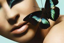 sommerfugler, beauty