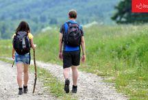 SĄDECKIE - szlaki turystyczne