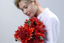 SHINee ✨ / #SHINee #샤이니 #Onew #Minho #Jonghyun #Key #Taemin