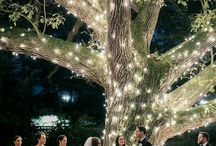 wedding ideas / by Kimberly Frazier