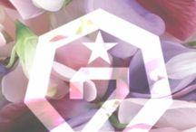 ♠ Got7 ♠