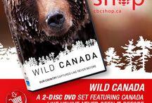 Wild Canada / Showcasing Canada's spectacular wildife and wilderness.