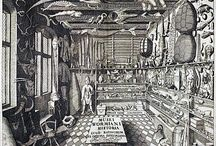 Wunderkammer (Wonder Room) / A tribute to the curiosity cabinets.
