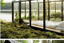 landscape & gardening ideas