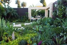 Landscape designer Phillip Withers' show garden / Designer Phillip Withers designed a small subtropical themed courtyard for the Australian Garden Show, Sydney, winning a silver medal.