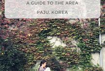ASIA • South Korea • Trips / Day trips from main areas of South Korea