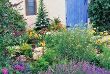 Inspiration | Santa Fe gardens